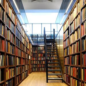 Библиотеки Зверево